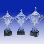 Crystal Cup Trophy TH142 (Size: Small)